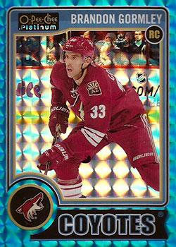 BRANDON GORMLEY Memorabilia Hockey Card