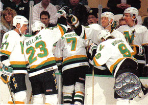MINNESOTA NORTH STARS Memorabilia Hockey Card